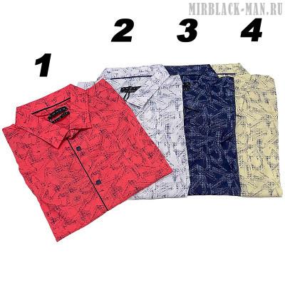 Рубашка AMATO 0479