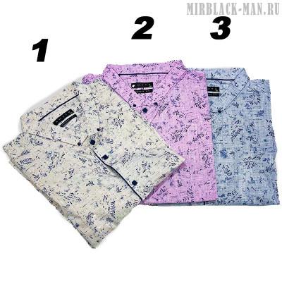 Рубашка AMATO 0481