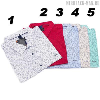 Рубашка AMATO 0527