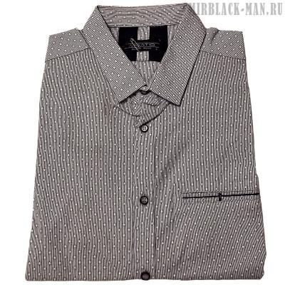 Рубашка AMATO 19526
