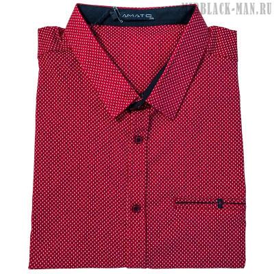 Рубашка AMATO 29665