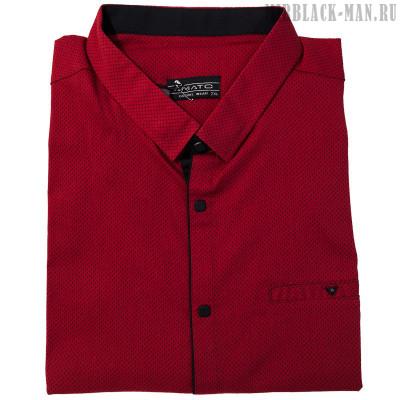 Рубашка AMATO 29693