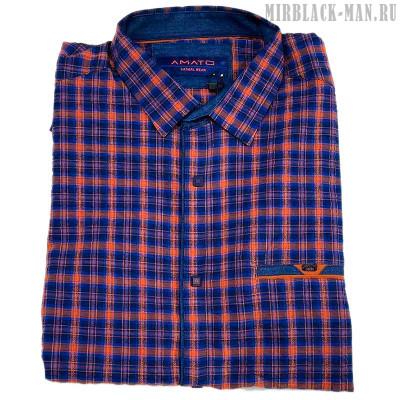 Рубашка AMATO 7112