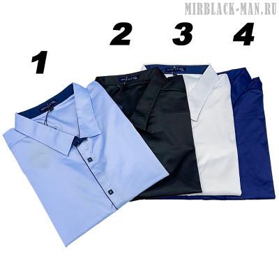 Рубашка AMATO 8144