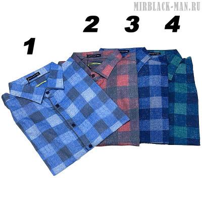 Рубашка AMATO 9666