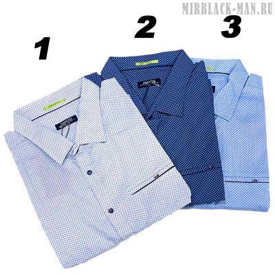 Рубашка AMATO 9724