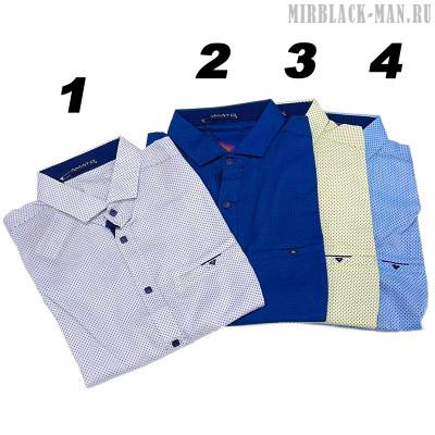 Рубашка AMATO 9733