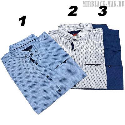Рубашка AMATO 9742