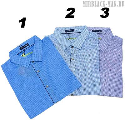 Рубашка AMATO 9794