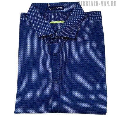 Рубашка AMATO 9802