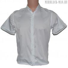 Рубашка белая AMATO
