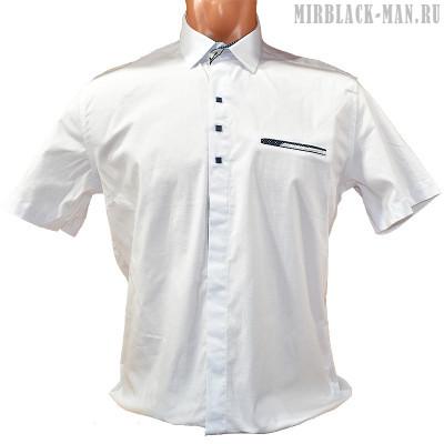 Рубашка белая NOSEDA 033