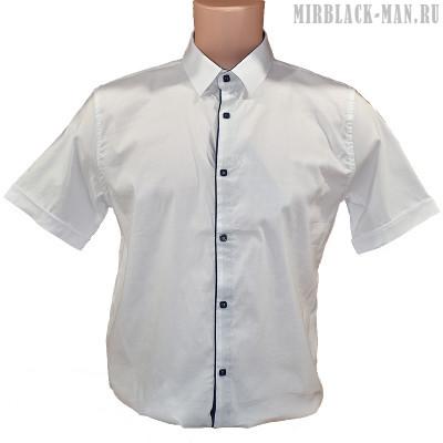 Рубашка белая F&T 037