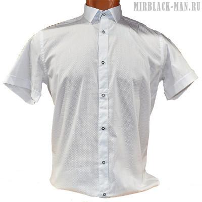 Рубашка белая ANG 047
