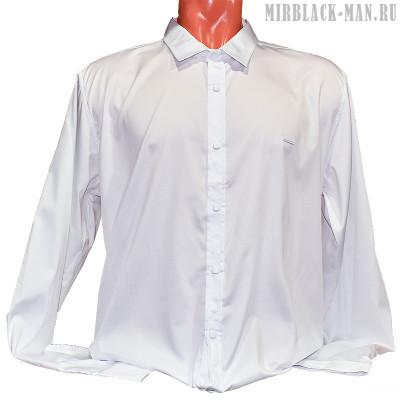 Рубашка белая BLACK STONE 4148-7