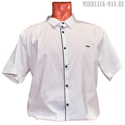 Рубашка белая BLACK STONE 5535