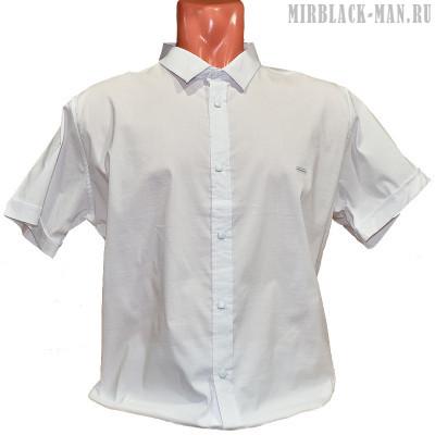 Рубашка белая BLACK STONE 5176-6