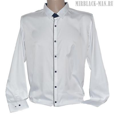 Рубашка белая AMATO 7518-1