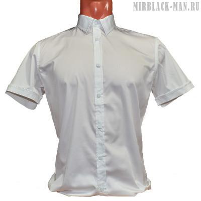 Рубашка белая AMATO 8145-5