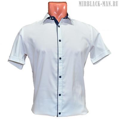 Рубашка белая AMATO 8157-2