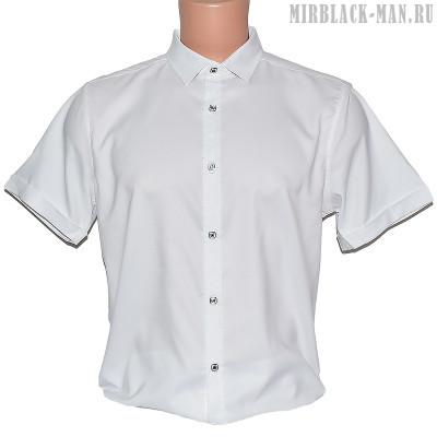 Рубашка белая AMATO 8664-2