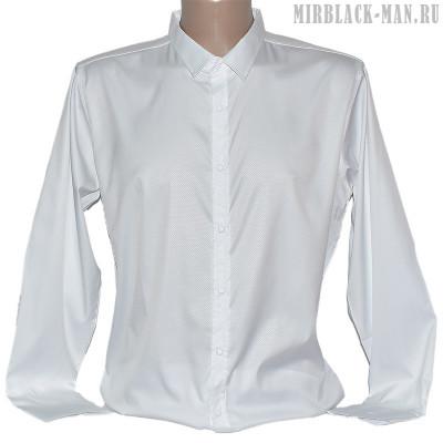 Рубашка белая AMATO 9089