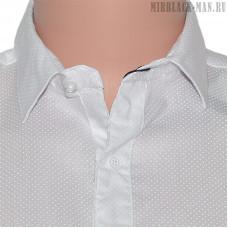 Рубашка белая ANG