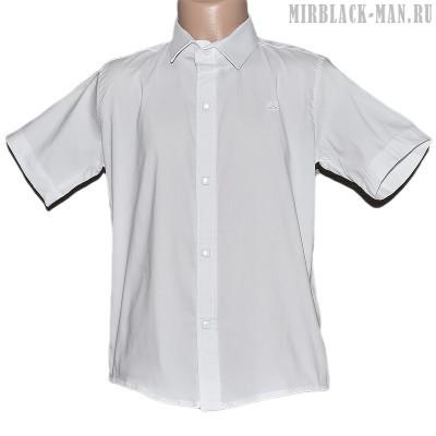 Рубашка белая NOSEDA 1003-1