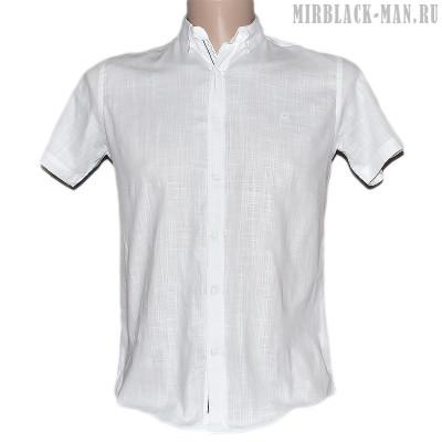 Рубашка белая NOSEDA 7461