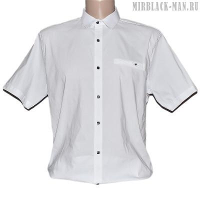 Рубашка белая NOSEDA 7647
