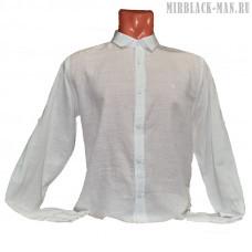 Рубашка белая STEFANO RICCI