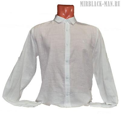 Рубашка белая STEFANO RICCI 3698