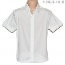 Рубашка белая TAFT