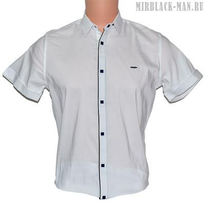 Рубашка белая TAFT 0530