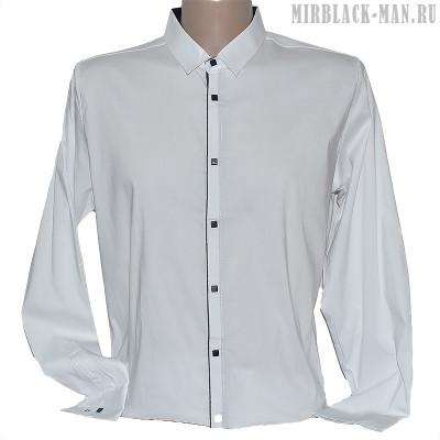 Рубашка белая TAFT 4166