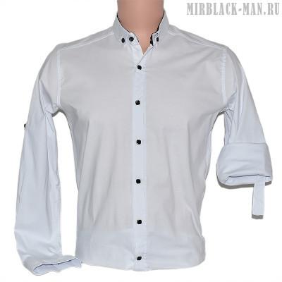 Рубашка белая ZERMANI 002