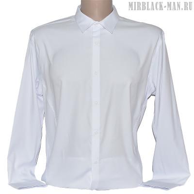 Рубашка белая INFINITY 0901.M-087