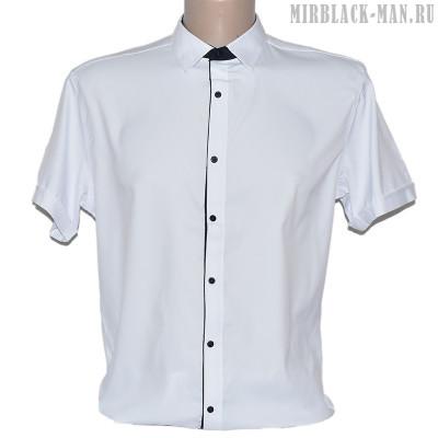 Рубашка белая INFINITY 2040