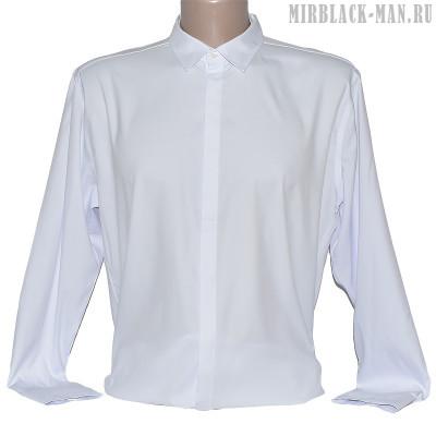 Рубашка белая INFINITY 3002.M-087