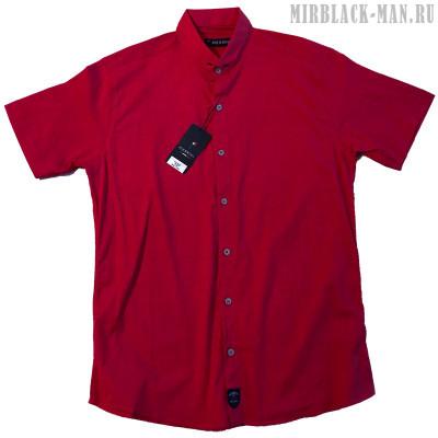 Рубашка PIERRINI 10
