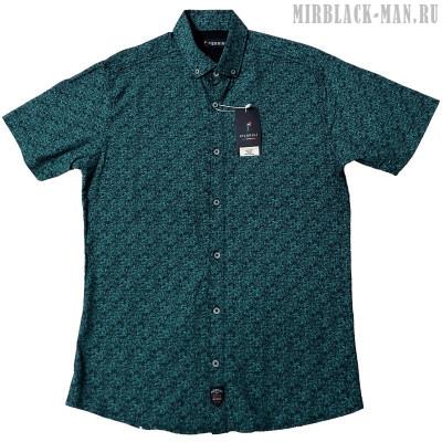 Рубашка PIERRINI 06