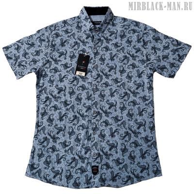 Рубашка PIERRINI 05